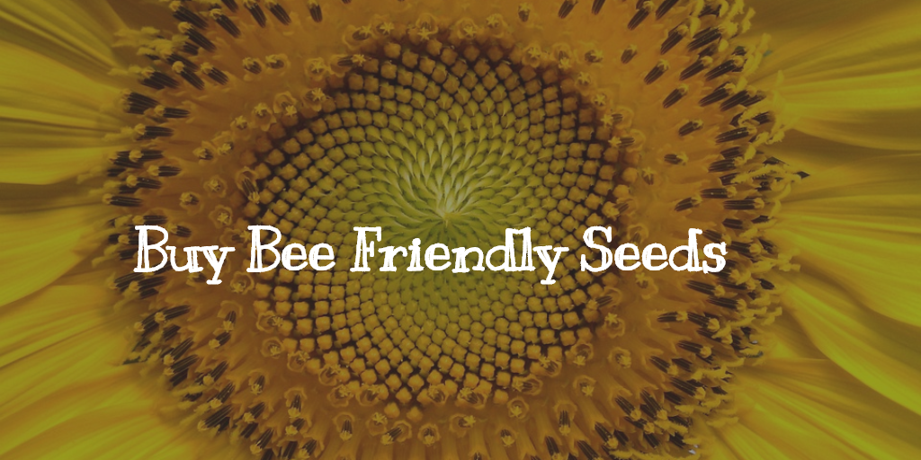 Buy Bee Friendly Seeds